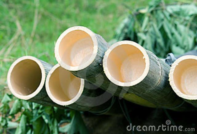 Bamboo Logs6