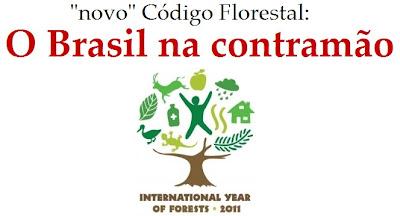 o Código Florestal e o Ano Internacional das Florestas