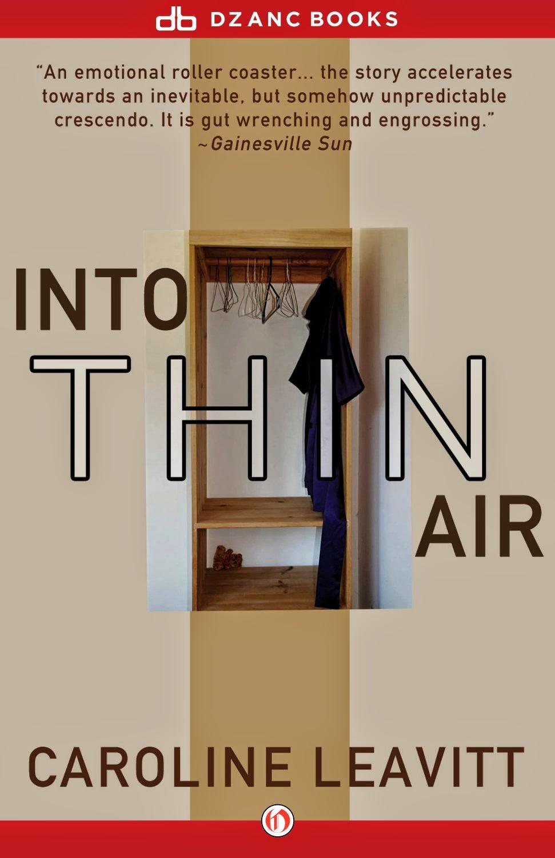 Into thin air essay