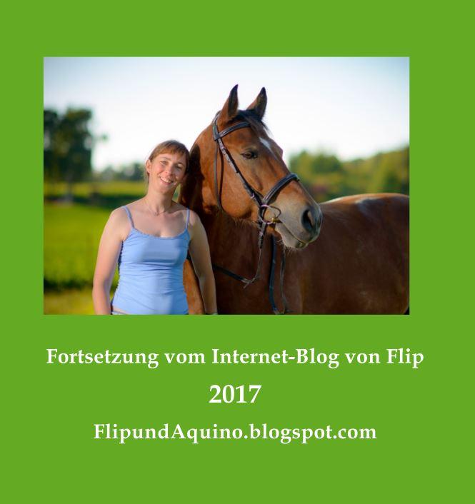 Blogbuch 2017: