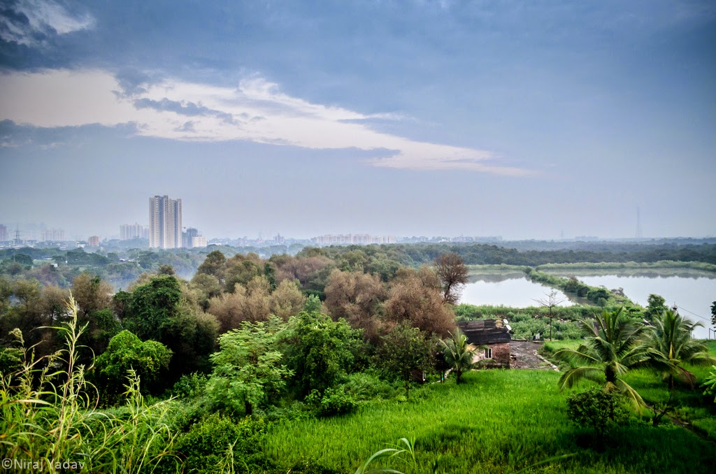 Thane high rise landscape