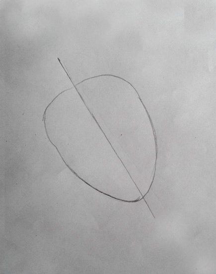 How To Draw Heart Diagram Class 10 41 Bl Fotografie De