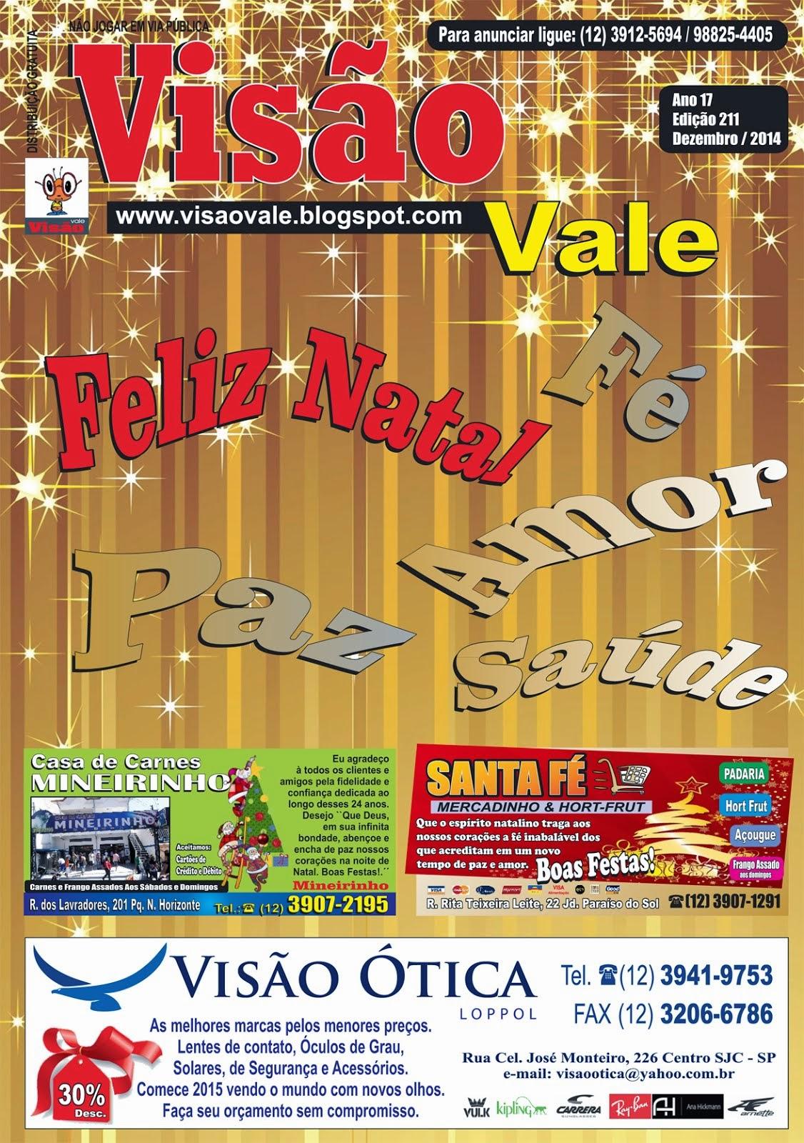 Revista Visão Vale Dez de 2014