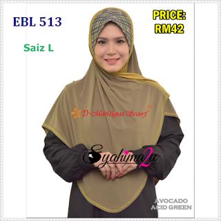EBL513