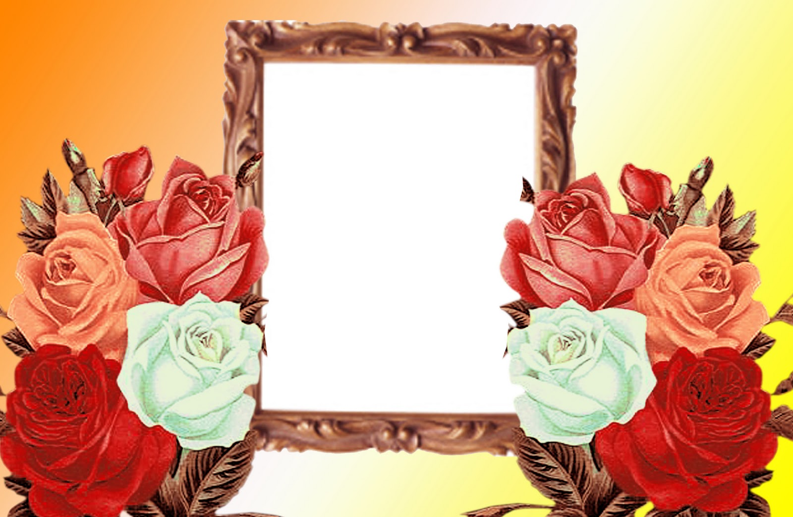 Wedding Frames for Photoshop