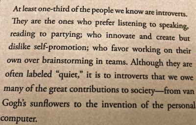 introvert, shy, quiet,