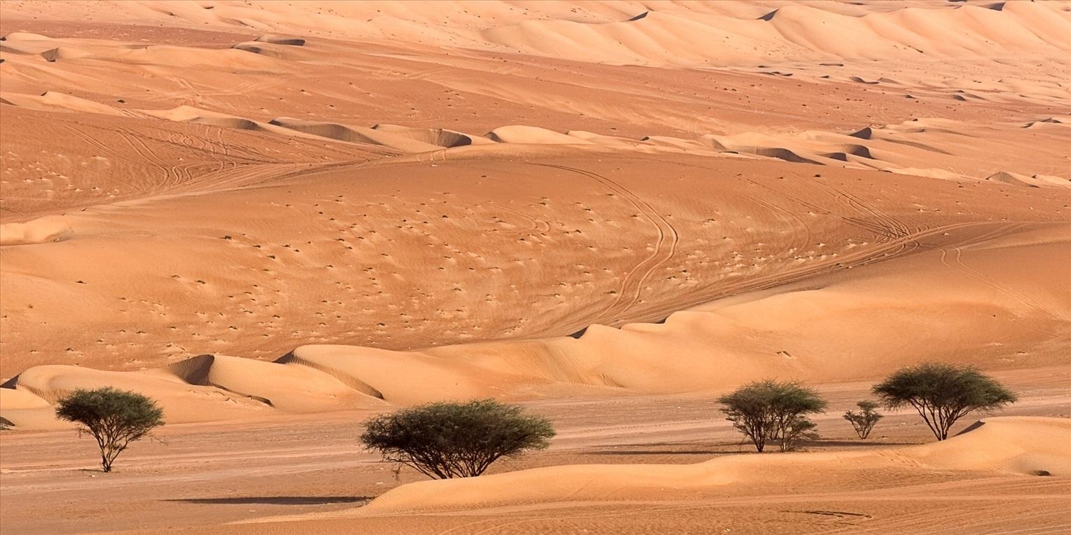 Redefining the face of beauty world 39 s largest deserts for Desert landscape