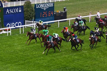 HEAVY METAL Winning The Longines Interantional Stakes At Ascot Tipped Here At A Huge 40/1
