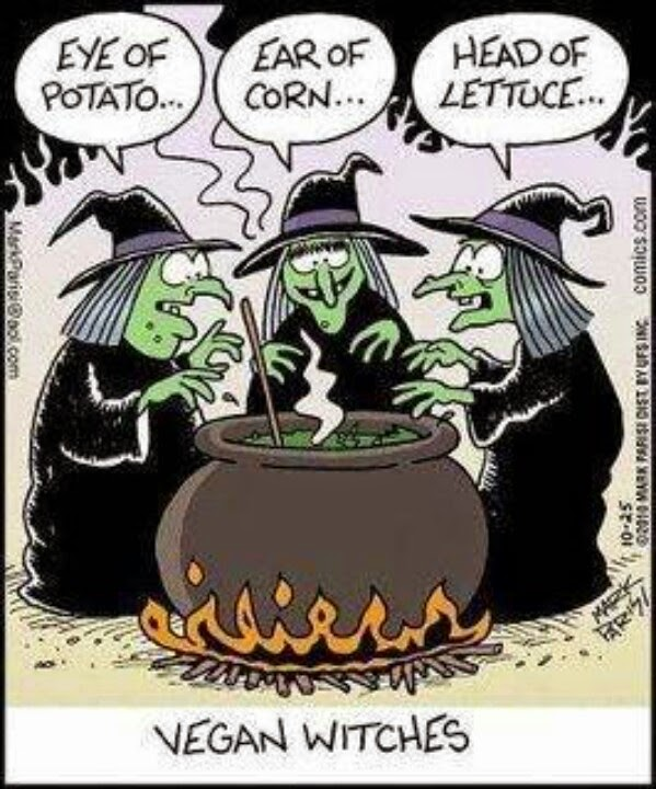 Funny Vegan witches cartoon joke picture