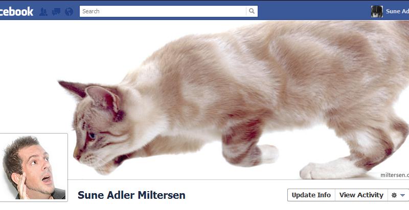 Capa para Facebook engraçada com gato