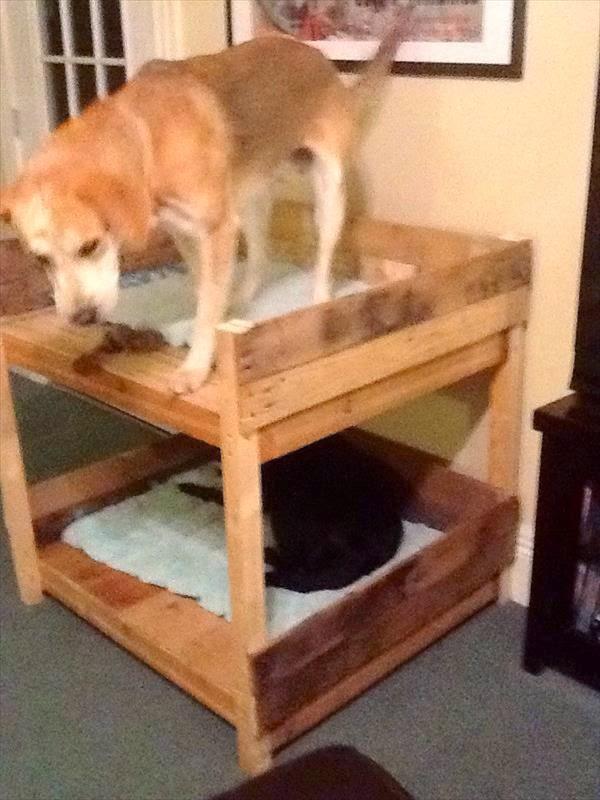 Literas para perros hechas con palets - Casa de gatos con palets ...