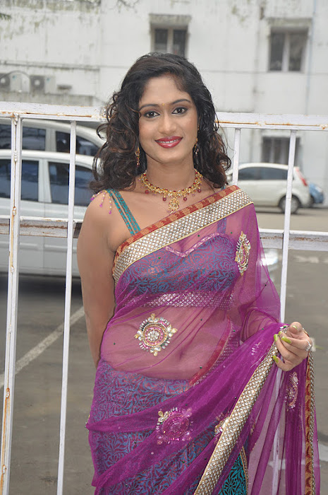 lavanya spicy transparent saree actress pics
