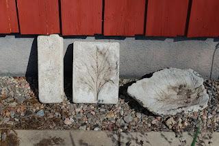 betong-löv mot vägg