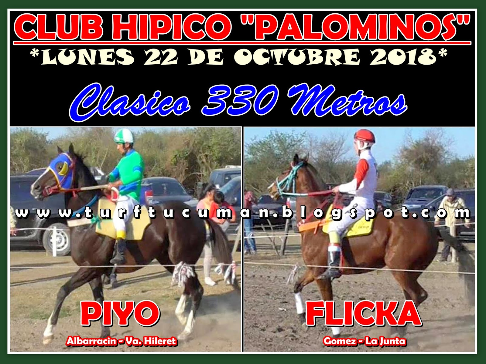 PIYO VS FLICKA