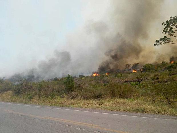 Incêndio acontece às margens da BR-242, na área da APA Marimbus/Araquara e do Parque Nacional (Foto: Tayne Luz Casca/Jornal da Chapada)
