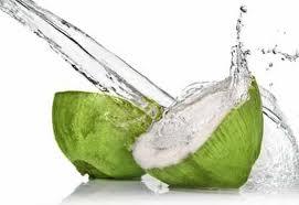 manfaat+air+kelapa+muda+bagi+kesehatan+dan+kecantikan