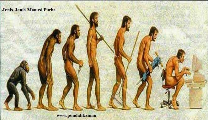 Jenis-Jenis Manusia Purba di Indonesia