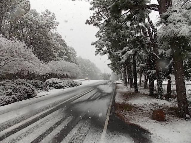Snow in Southern Pines