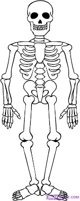 halloween skeleton coloring pages - Halloween Skeleton Coloring Pages