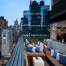 Thompson Hotel Rooftop Bar NYC