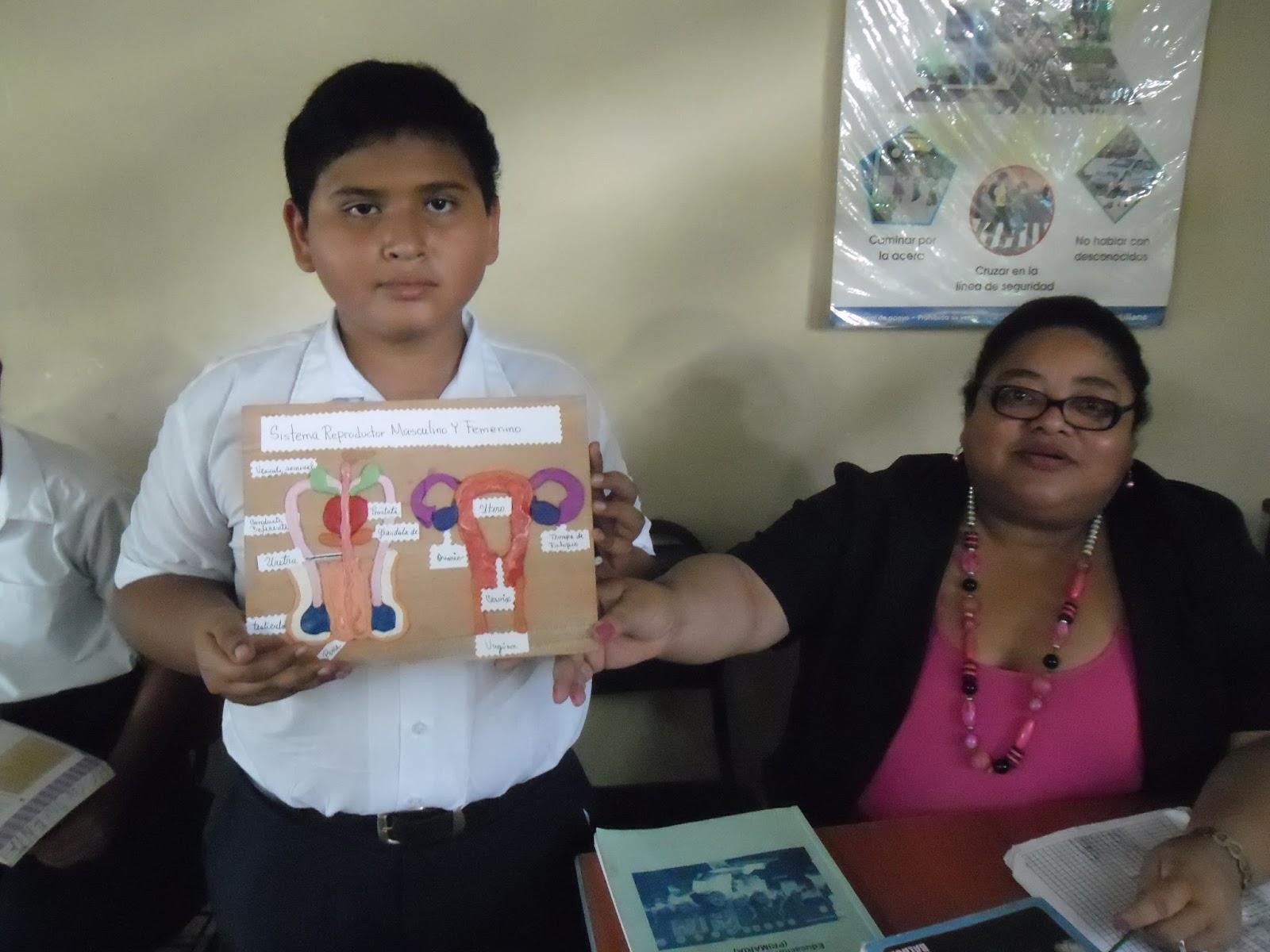 Imagenes Sobre Aparato Reproductor Femenino Y Masculino | Video di