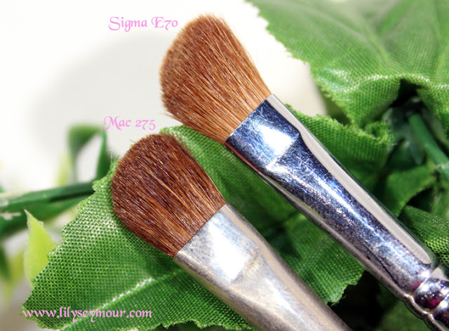 Mac 275 Angle Brush and Sigma E70 Angle Brush
