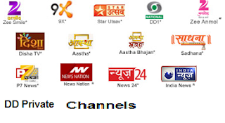 Current Status of Private Channels on DD Direct Plus For 2014