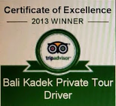 Bali Kadaek Private Tour Driver