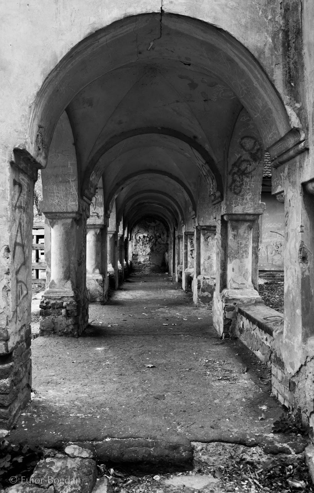 Palatul Cantacuzino Pascani ASIRYS