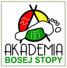 http://polakpotrafi.pl/projekt/akademia-bosej-stopy