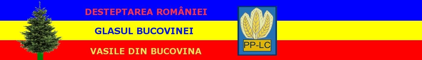Vasile din Bucovina