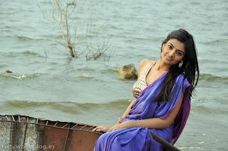 nikitha_narayana_hot_saree_stills_photos_003.jpg