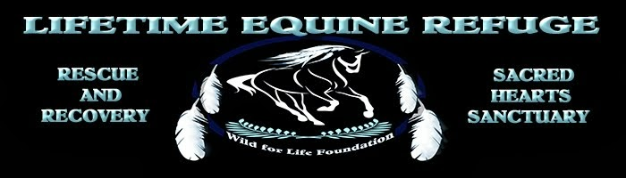 Lifetime Equine Refuge