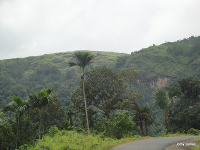 On the way to Wagamon Meadows