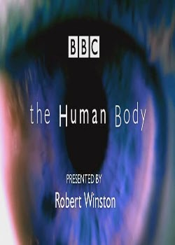 Download   BBC: O Corpo Humano Episódio 02 AVI + RMVB Legendado