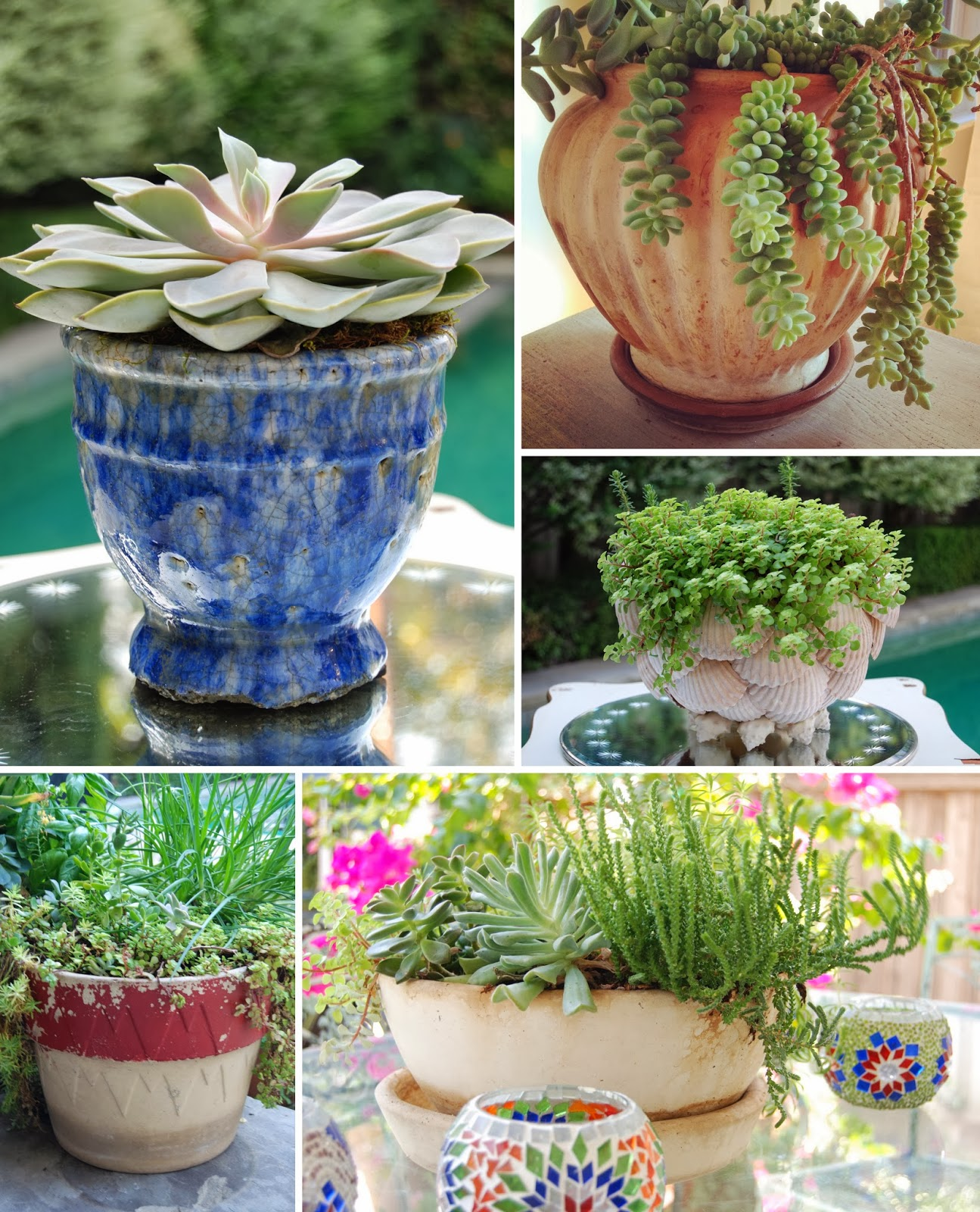 Garden Planters and Pots
