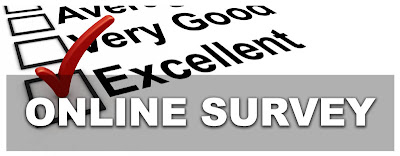 What is an online survey?