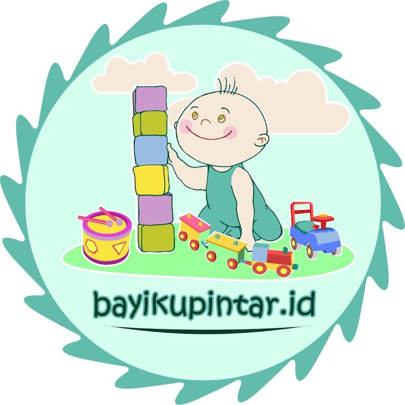 Bayikupintar.id