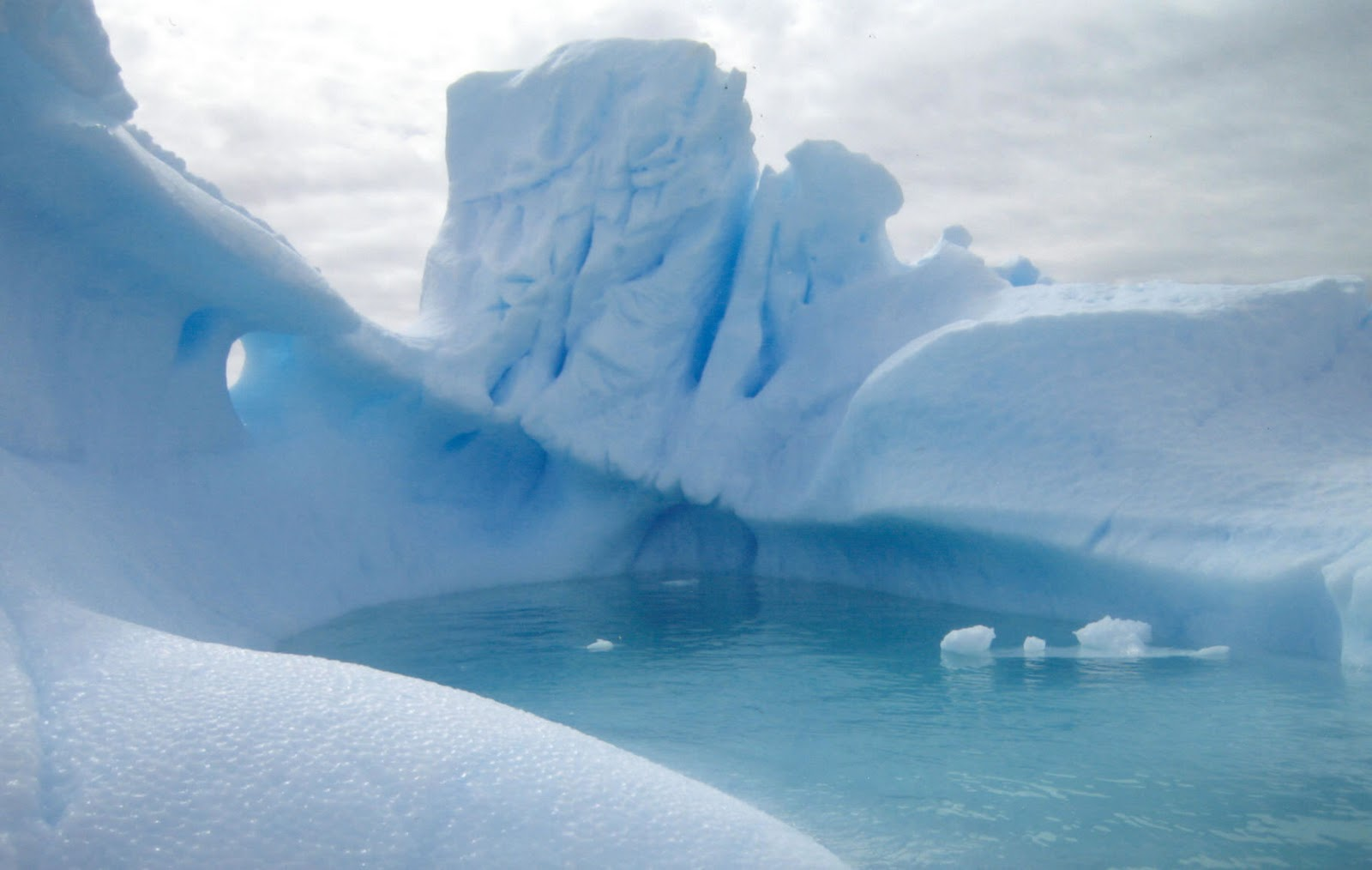 Antartica Icebergs Wallpapers pictures | cini clips