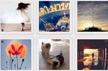 Websta instagram photo feed widget
