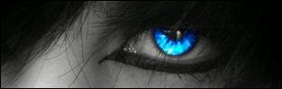 http://zycie-w-trasie.blogspot.com/