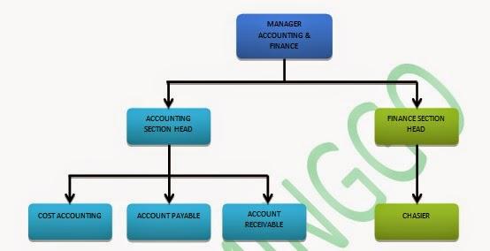 pt flaminggo  struktur organisasi dan tugas pokok departemen accounting  u0026 finance  edit