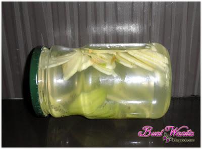 Experiment Dengan Air Detox Buah / Fruit Infused Water. Cara Buat Air Detox Buah-Buahan. Cara Buat Fruits Infused Water. Air Detox Infused Dengan Kiwi Dan Epal HIjau