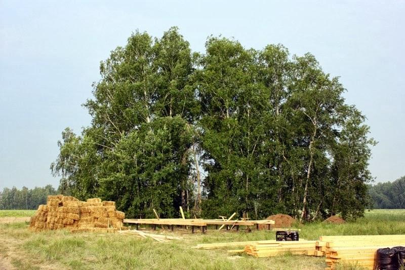 Проект как построить дом из бруса