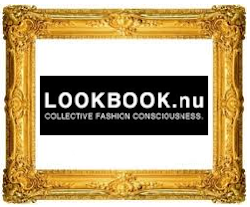 Follow us with Lookbook.NU