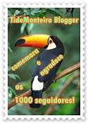 Banner TideMonteiro Blogger 1.000 Seguidores