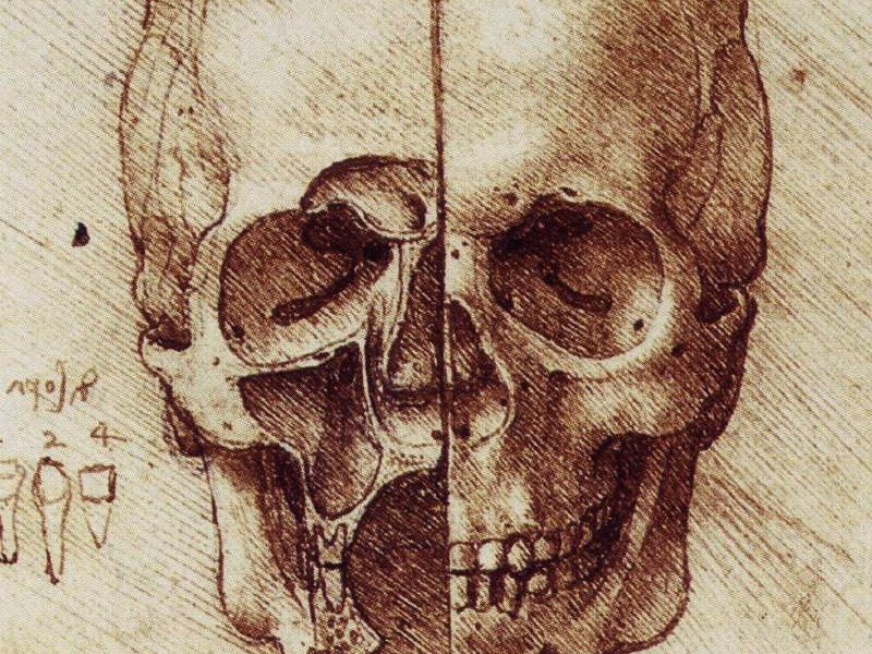 ENORMIO: LEONARDO DA VINCI / «...y la anatomía» / Pintor, escultor ...