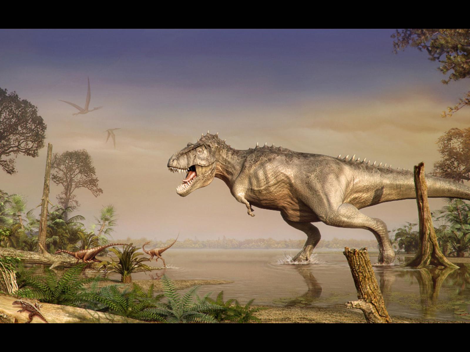 Mega post Fotos Dinosaurios