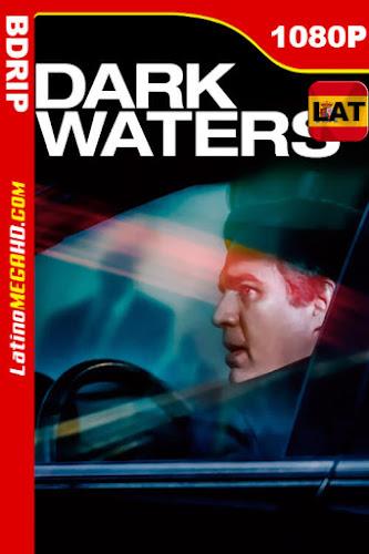 El precio de la verdad: Dark Waters (2019) Latino HD BDRip 1080P - 2019