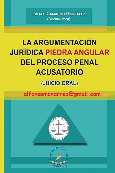 LIBROS EN DERECHO: LA ARGUMENTACIÓN JURÍDICA PIEDRA